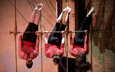 Xelias-multiple-trapeze