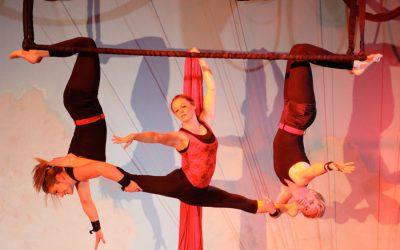 Xelias-Aerial-Arts-Studio-11-swing