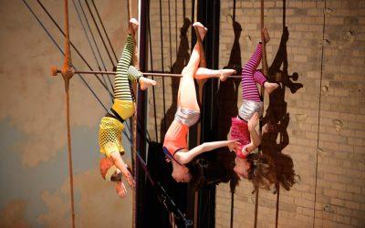 Xelias-Aerial-Arts-Studio-15-three-girls-striped-leotards