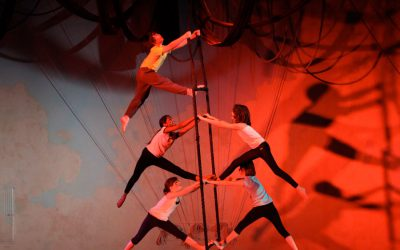 Xelias-Aerial-Arts-Studio-7-ladder-climb