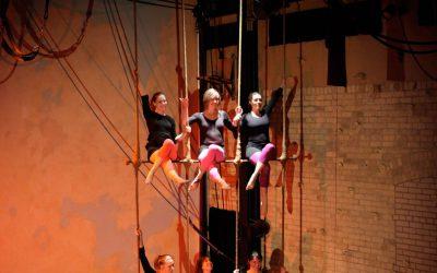 Xelias-Aerial-Arts-Studio-9-six-girls-crossed-legs-on-trapeze